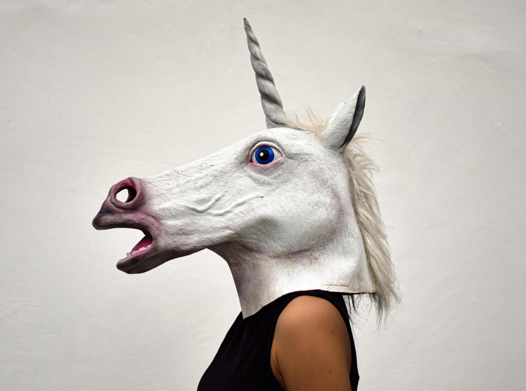 Person wearing unicorn mask