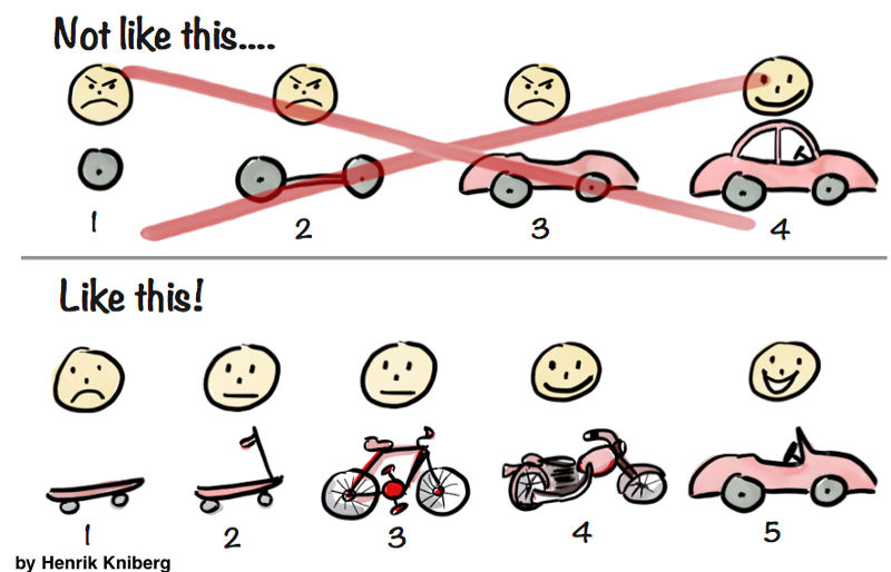 Minimum viable product cartoon